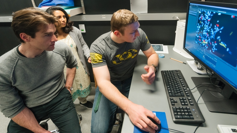 Students work with their professor at a computer.