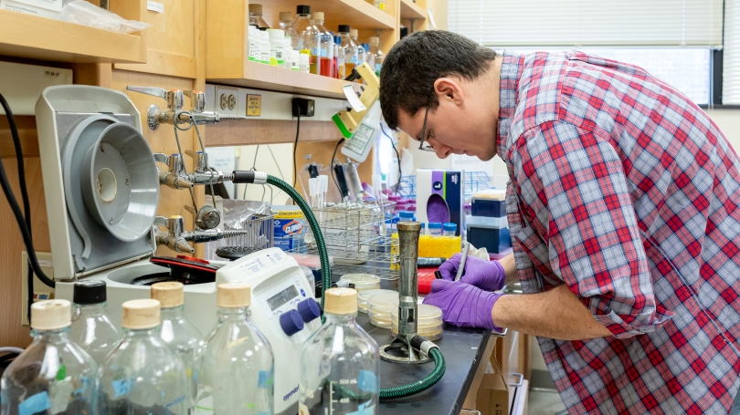 A student works at a lab bench.
