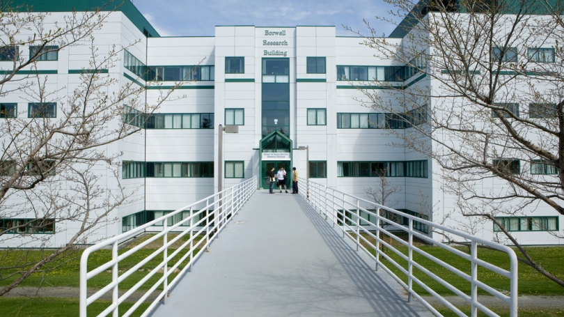 Picture of the Borwell Research Building at DHMC