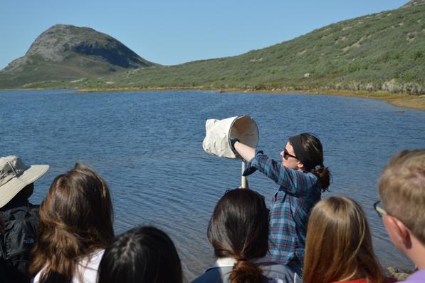 Arctic postdoctoral fellow Lauren Culler