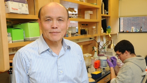 professor ambrose cheung in his lab with graduate student stephen costa