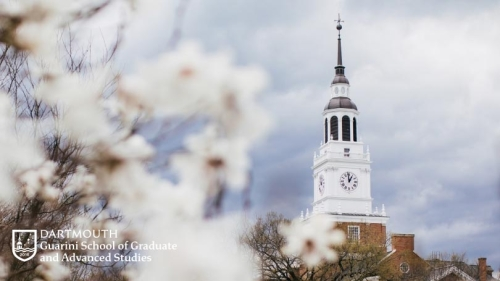 ping blossoms and baker tower