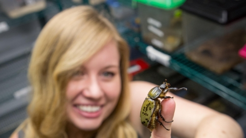 Liz Studer EEES With Insect