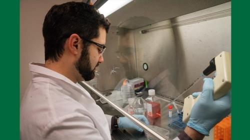 nicholas warren in Eastman Lab, PEMM program