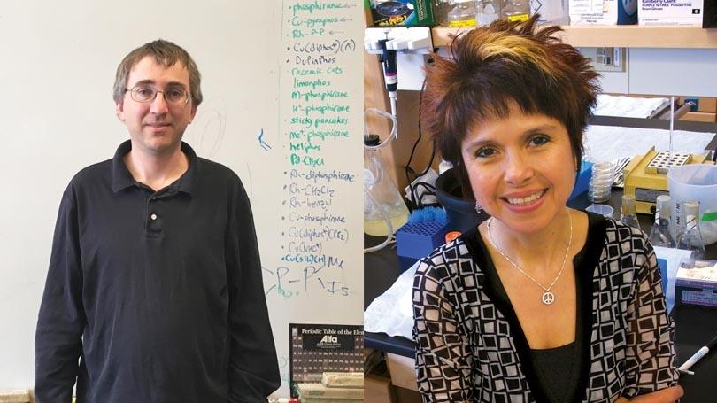 faculty mentor award recipients 2017